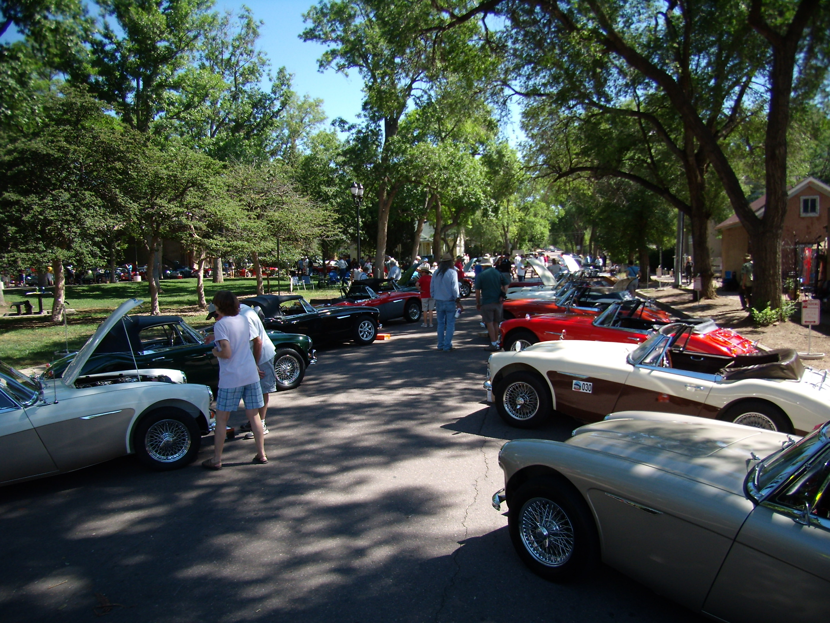the Austin-Healey Conclave