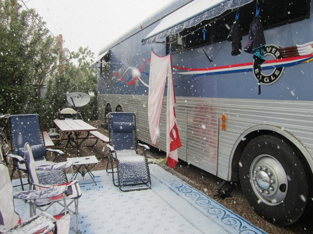snowy Tucson 003