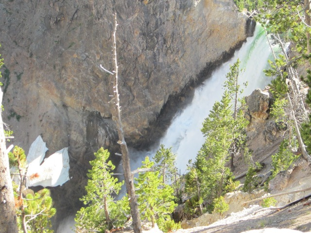 Yellowstone & rodeo 062