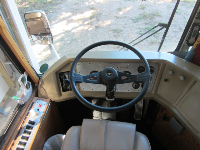steering wheel and dash 002