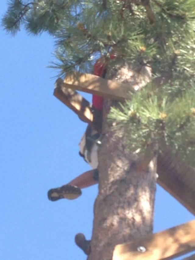 Jadelyn climbing